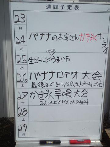 PAP_0412.jpg