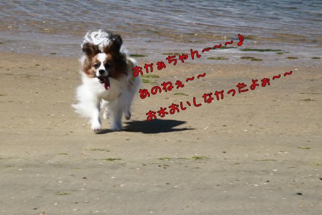 20131006121908a.jpg