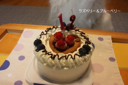 IMG_10532.jpg