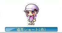 Maple121209_043555.jpg
