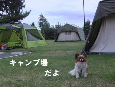 キャンプ場だよ