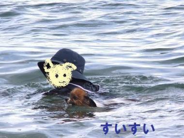 並んで泳ごう