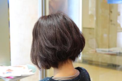 nishikawasan2012122401.jpg