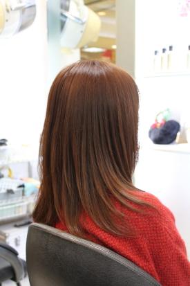 wakaisan2012122405.jpg