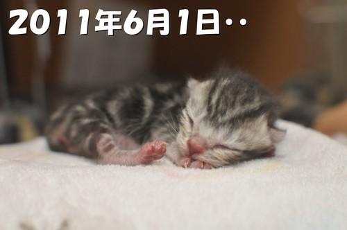 001_20120527200816.jpg