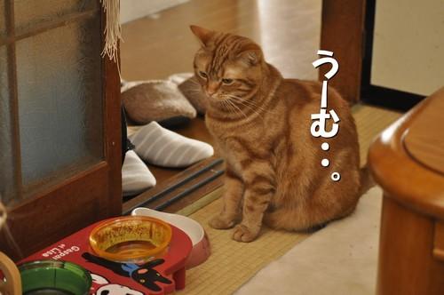 001_20120528095608.jpg