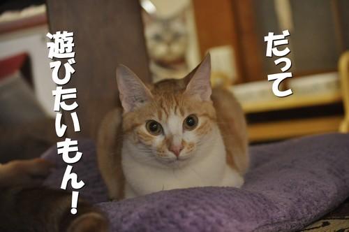 001_20120704193031.jpg