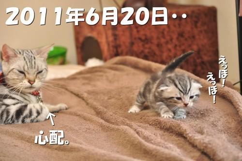 003_20120527200815.jpg