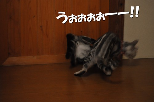 004_20120426123105.jpg