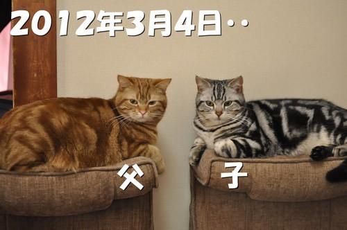 009_20120527201017.jpg