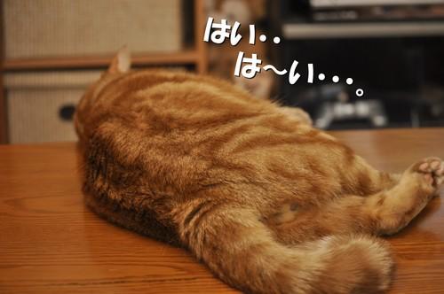 009_20120629132214.jpg