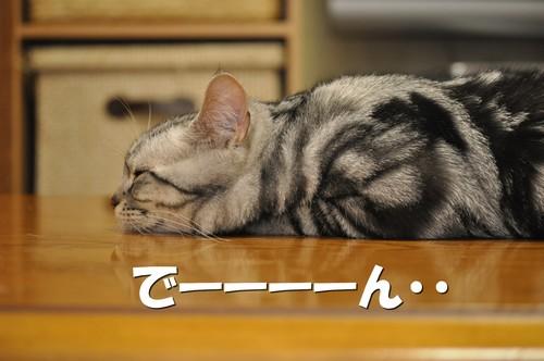 010_20120601153126.jpg