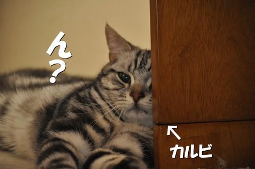 017_20120601153300.jpg