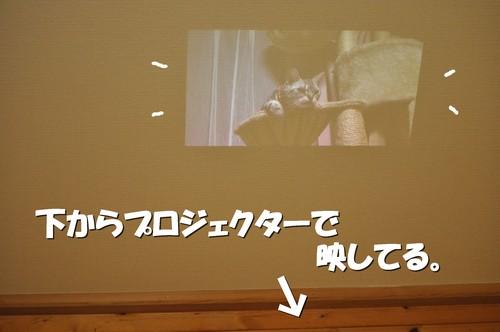 024_20120914214051.jpg
