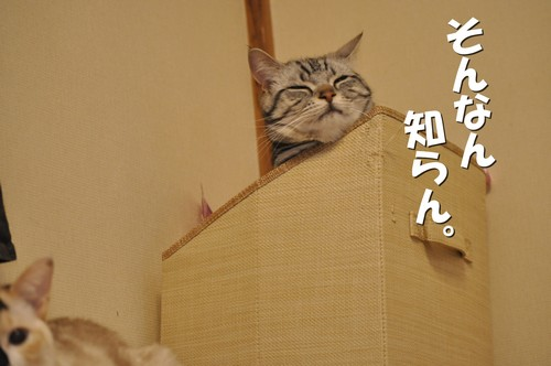 02_20120524161200.jpg