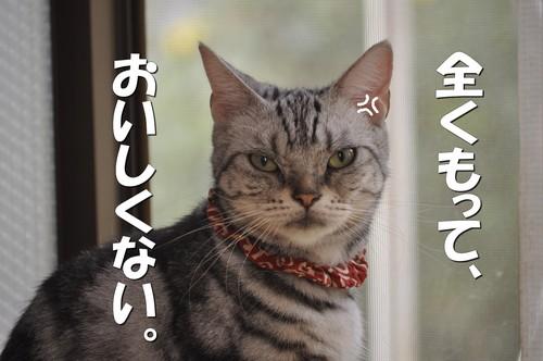 100_20120819131729.jpg