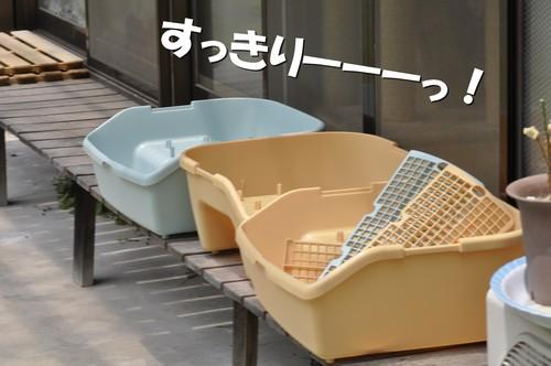 12_20120524161306.jpg