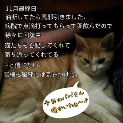 rps20121201_150753.jpg