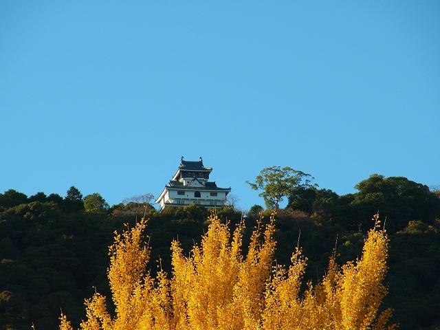 iwakuni2012.11.16 040