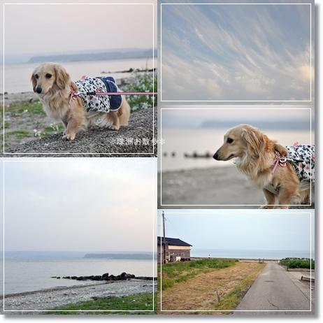 海辺のお散歩5-1