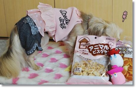 コピー ~ お洋服とおもちゃ 052