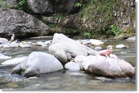 綿ヶ滝2012 094