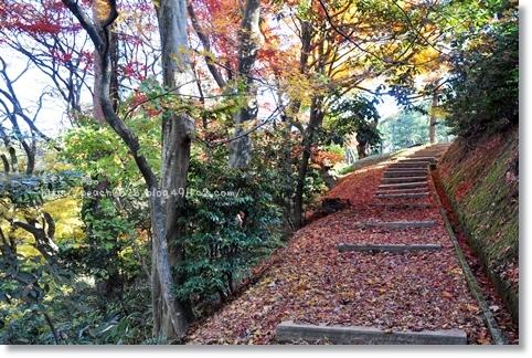 うだつ山2012秋 137