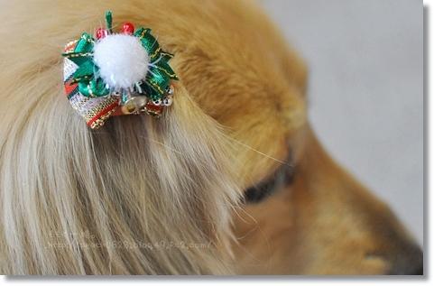 クリスマス2012 030