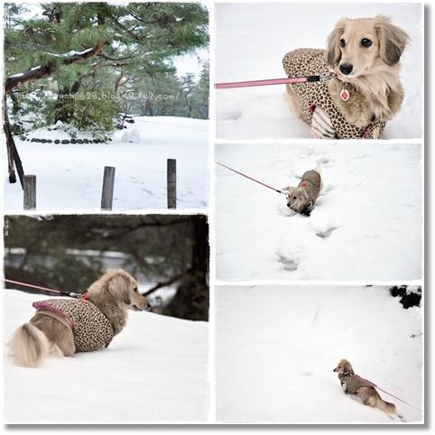 雪あそび5-1