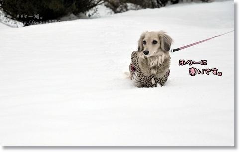 雪あそび 006