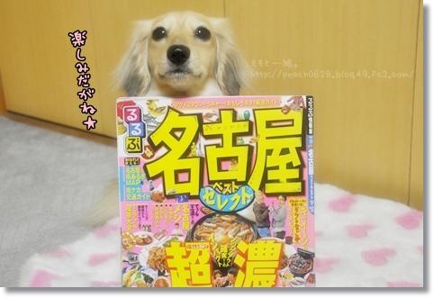 名古屋行き 018 copy