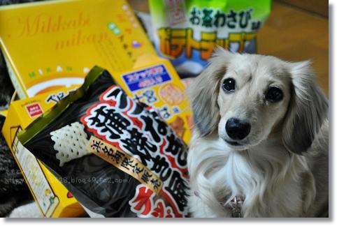 静岡お菓子 004