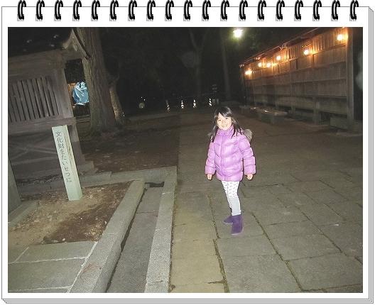 009_20130102120956.jpg