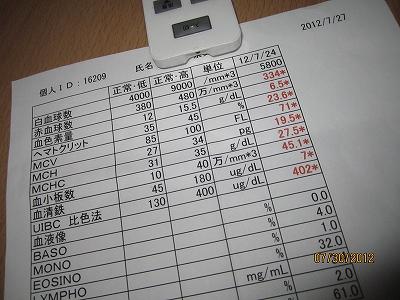 namikoママの血液検査