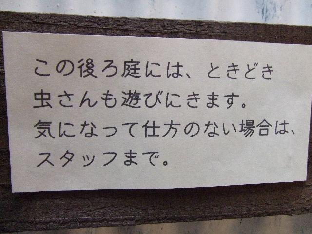 2012_06100021.jpg