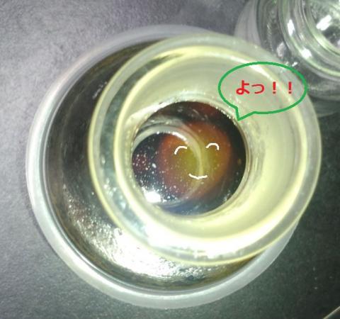 謎の生物_convert_20121003203005