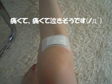 DSCN1244_convert_20120727122024.jpg