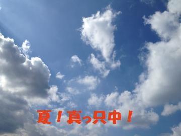 IMG_1064_convert_20120713152717.jpg