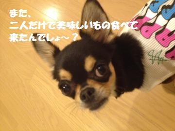 IMG_1639_convert_20120912153645.jpg