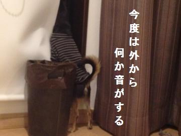 IMG_2290_convert_20121122215139.jpg