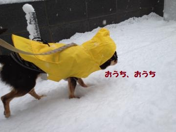IMG_2898_convert_20130114161350.jpg
