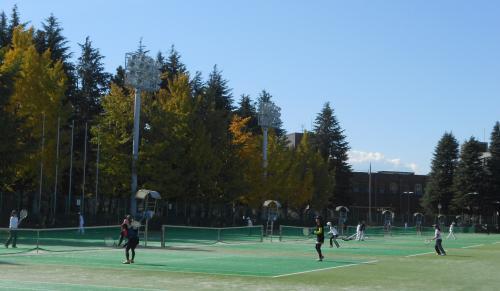 夢見るテニス