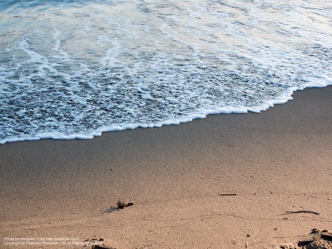 グラデーション砂浜 [A] SS1/400 F5.6 ISO100