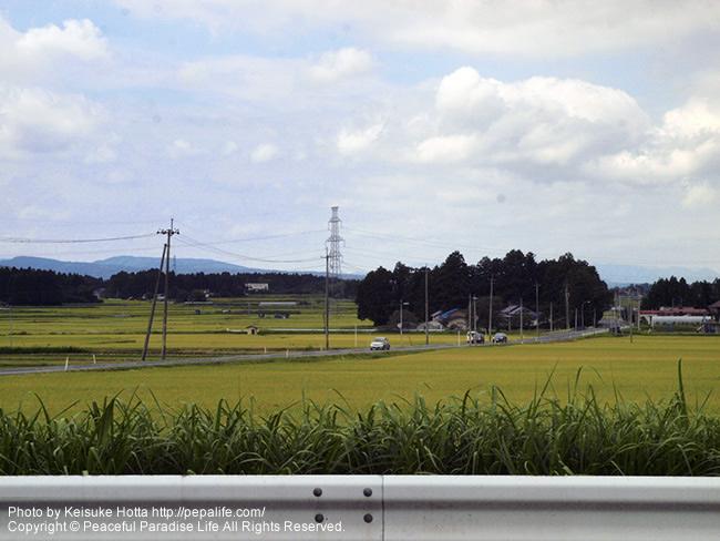 国道4号線からの田園風景