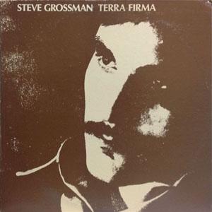 STEVE GROSSMAN_TERRA FIRMA_201209
