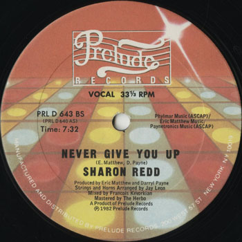 DG_SHARON REDD_NEVER GIVE YOU UP_201307
