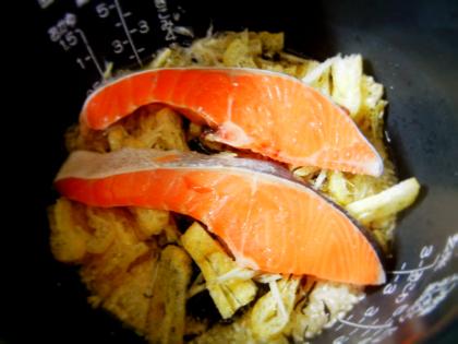 DSCN1199_塩鮭たきこみ2