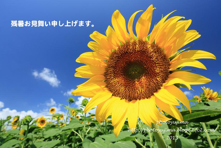 7Z8C8689.jpg