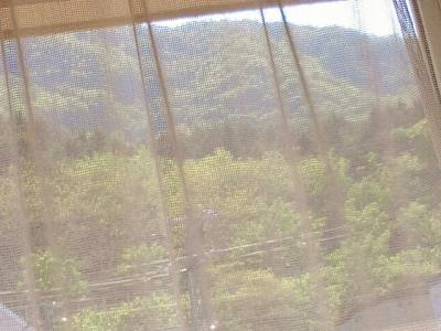 2012-5-31-1_convert_20120601203955.jpg