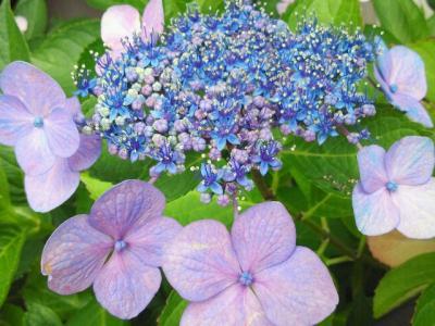 2012-8-12-3_convert_20120812222335.jpg